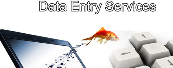 Outsourcing Data Entry Services